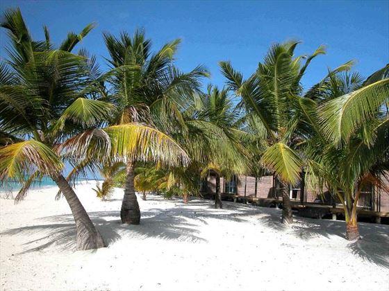 Beachfront view of Beach Villas at Kuredu Island Resort
