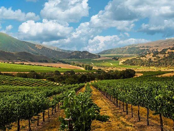 Beringer Vineyards, St Helena