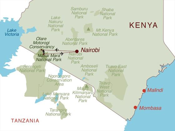 Big Cat Safari Map