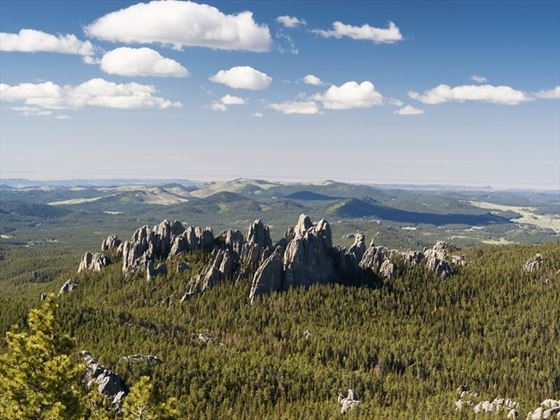 Black Hills National Park, South Dakota