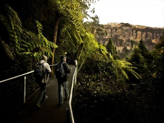 Walkway through the Blue Mountains