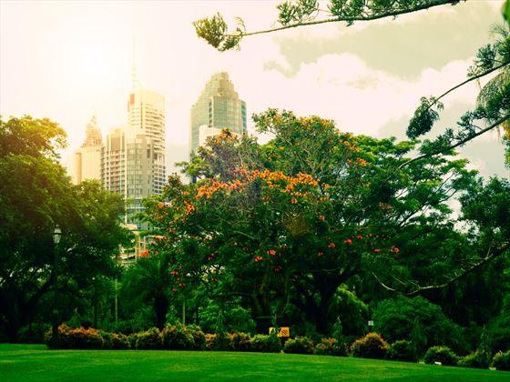 Botanical gardens in Brisbane