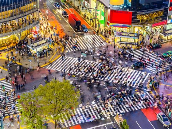 Busy Shibuya crosswalk in Tokyo