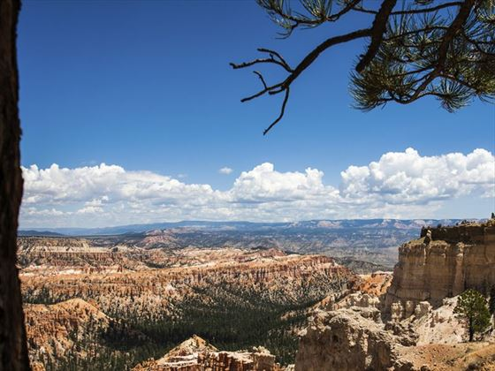 Cliffs of Bryce Canyon National Park