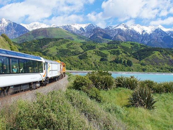 Coastal Pacific train on the Kaikoura Coast