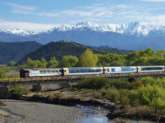 Coastal Pacific train on the Kahutara River