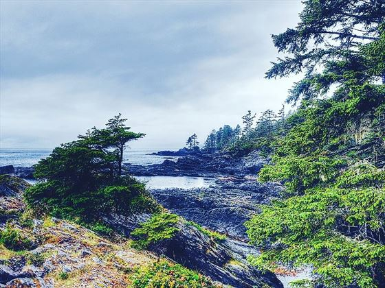Coastline around Vancouver Island's Pacific Rim National Park Reserve