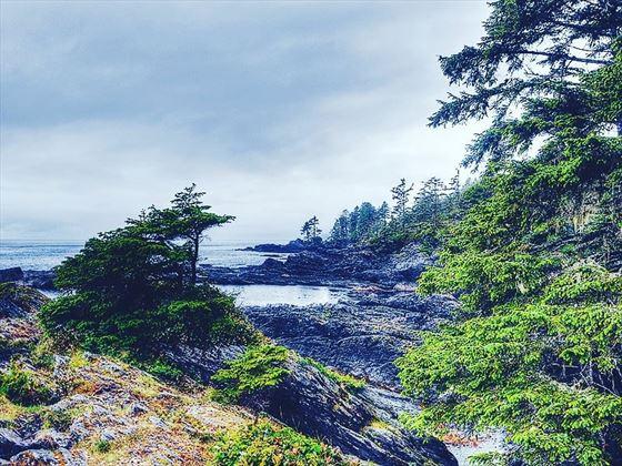 Coastline around Vancouver Island's Pacific Rim National Park Reserve