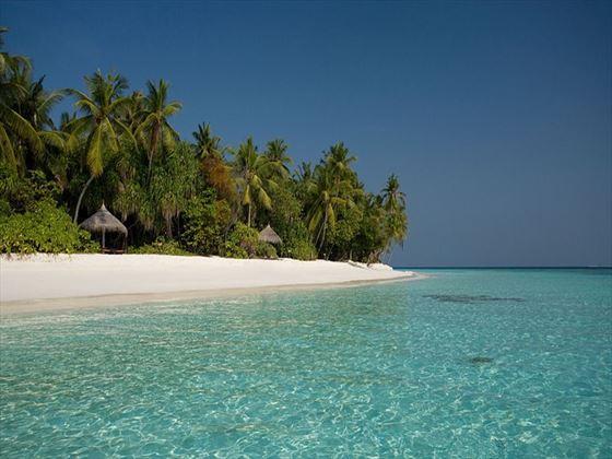 Coco Palm Dhuni Kolhu beach
