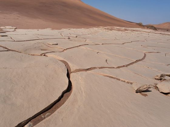 Cracked desert floor in Namibia