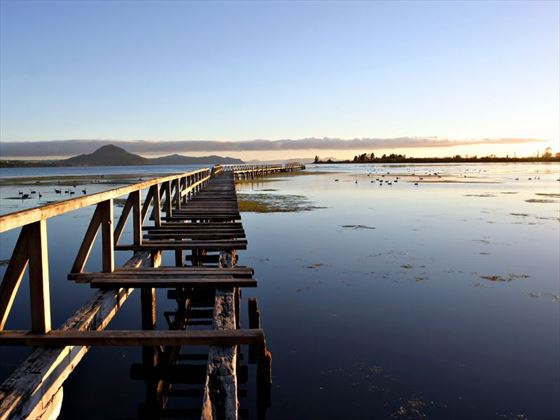 Derelict pier at Taupo