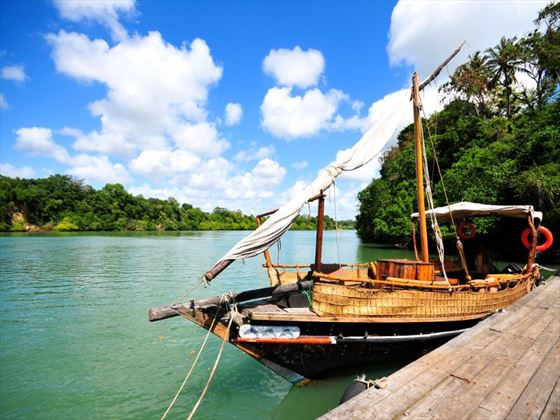 Dhow boat on the coast