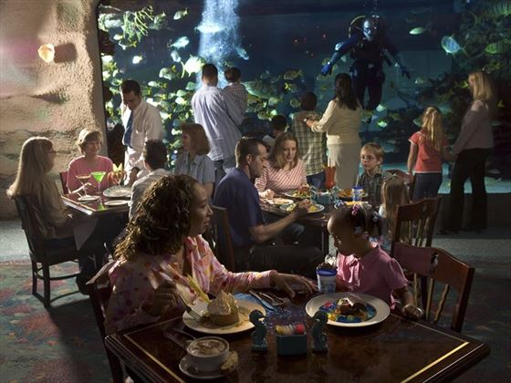 Dining at Houston Aquarium