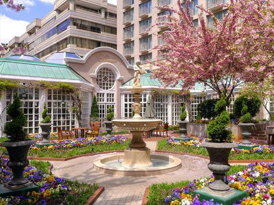 Fairmont Washington D.C. Courtyard