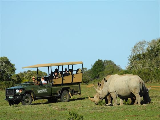 Game drives at the Shamwari Private Game Reserve