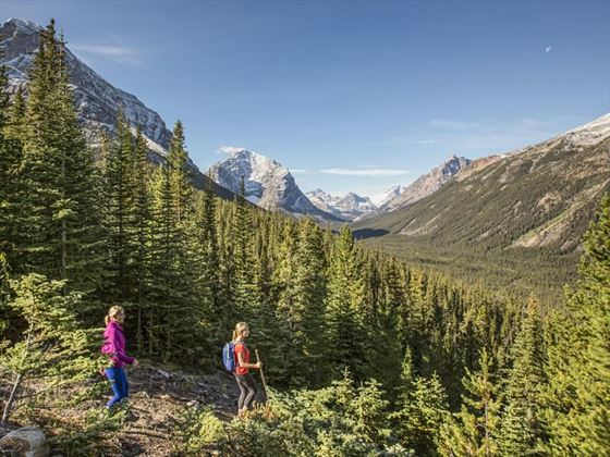 Hiking the Edith Cavell Trail in Jasper National Park