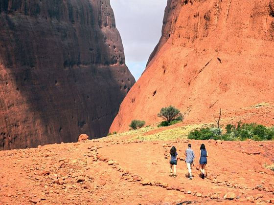 Hiking near Uluru