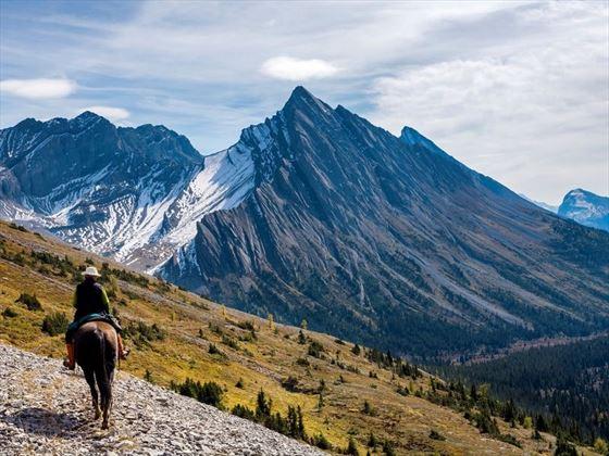 Horseback Ride along Allenby Pass