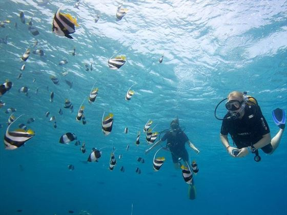 Hurawalhi Island Resort scuba diving