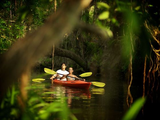 Kayaking on Fort Myers' Estero River