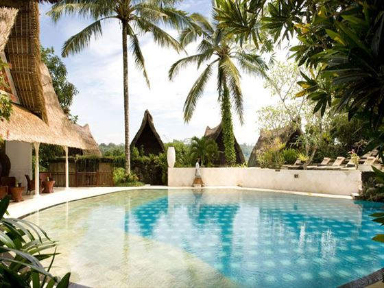 Kupu Kupu Barong Villas & Tree Spa pool