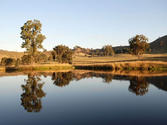 Lake in the Yarra Valley