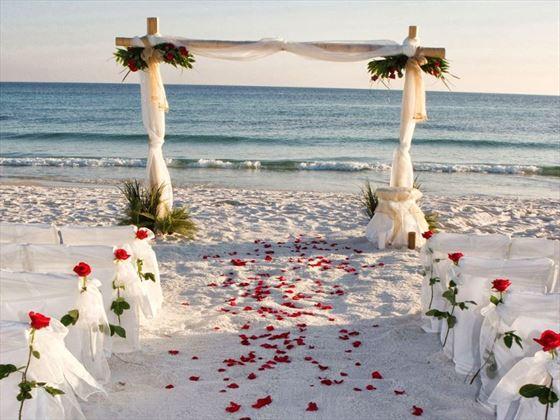 Beachfront gazebo