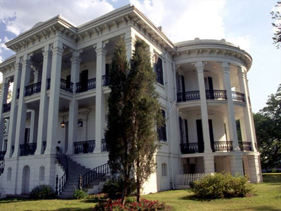 Admire the grandeur of Nottoway Plantation