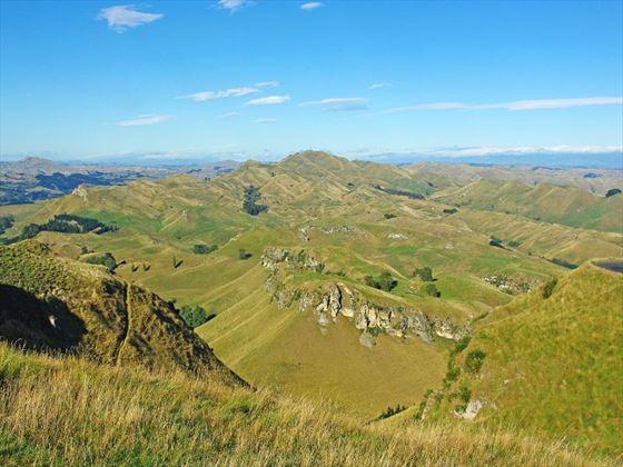 Napier hills