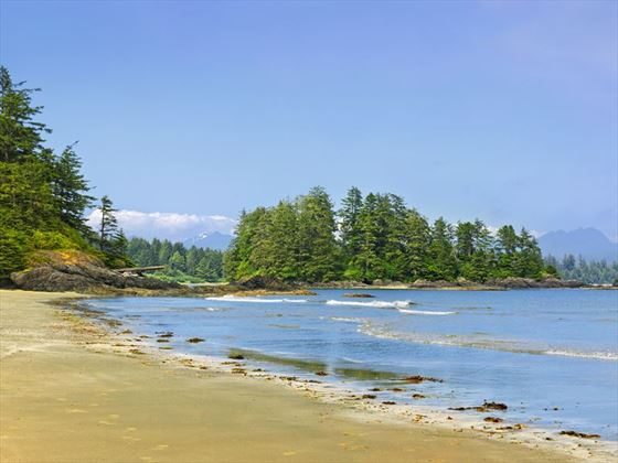 Beach in the Pacific Rim National Park