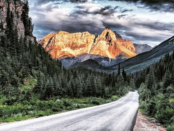 Heading towards Cathedral Mountain just off the Trans Canada Highway