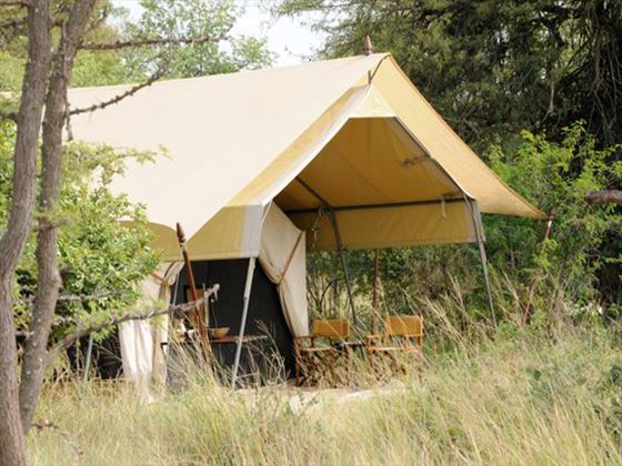 Serengeti Under Canvas accommodation