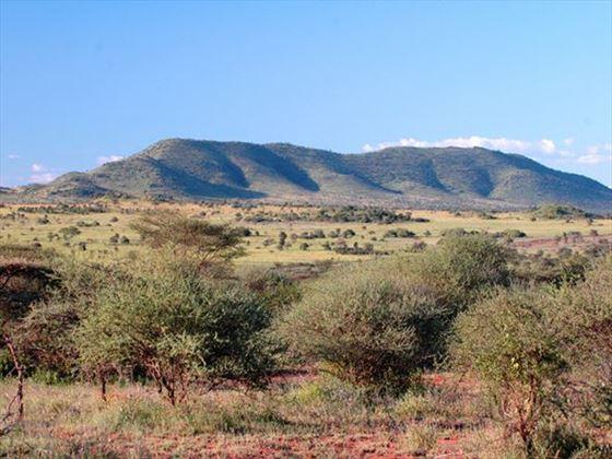 Serengeti terrain