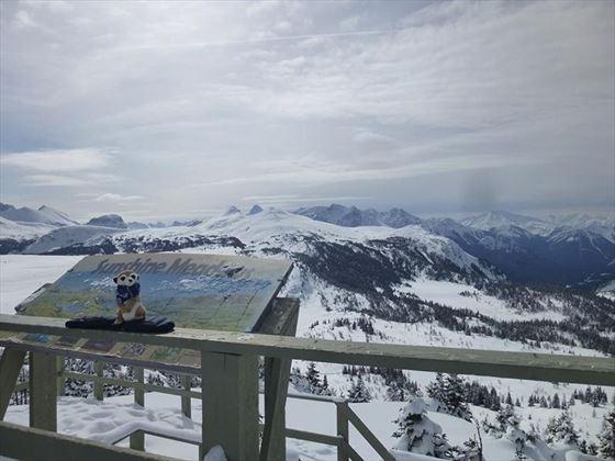 Stunning Banff views