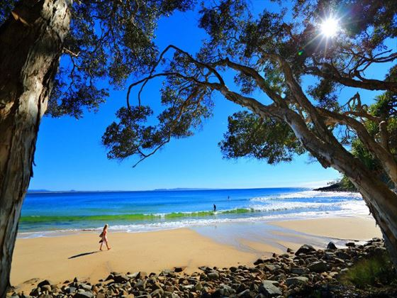 Tea Tree Bay, Noosa National Park, Sunshine Coast
