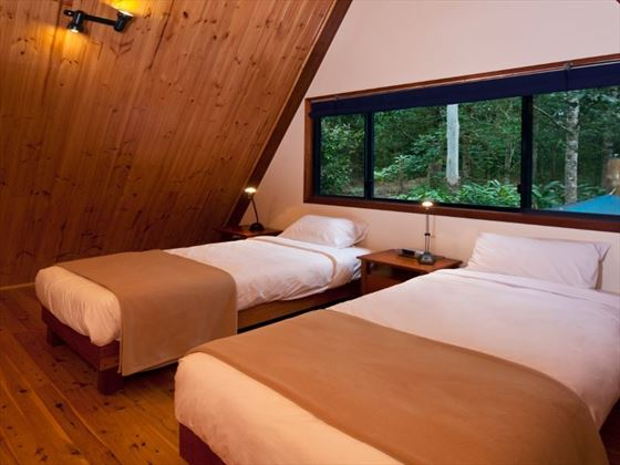 Twin room at Rose Gums Wilderness Retreat