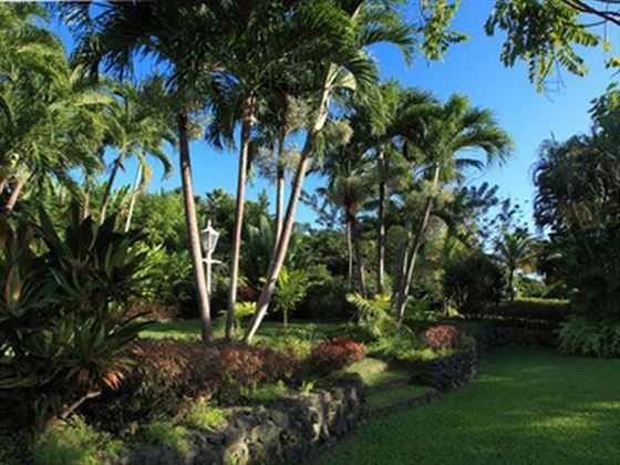 The lush tropical gardens at Villa Vistamar