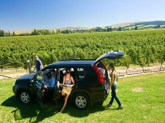 Driving through the Waipara winery region