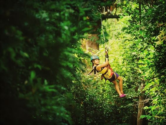 Zip-wiring in Costa Rica