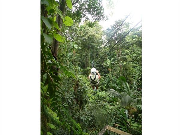 zip lining adventure st lucia