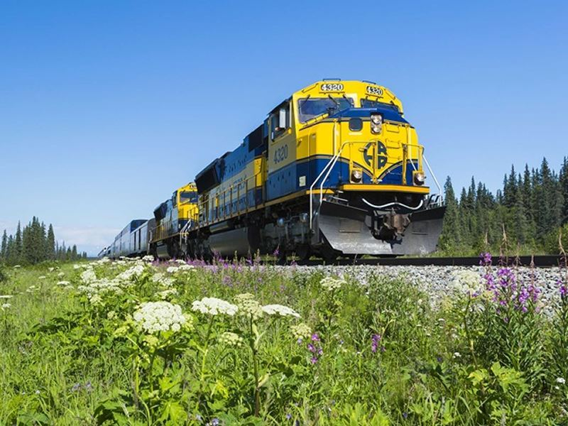 alaska railroad michael de young