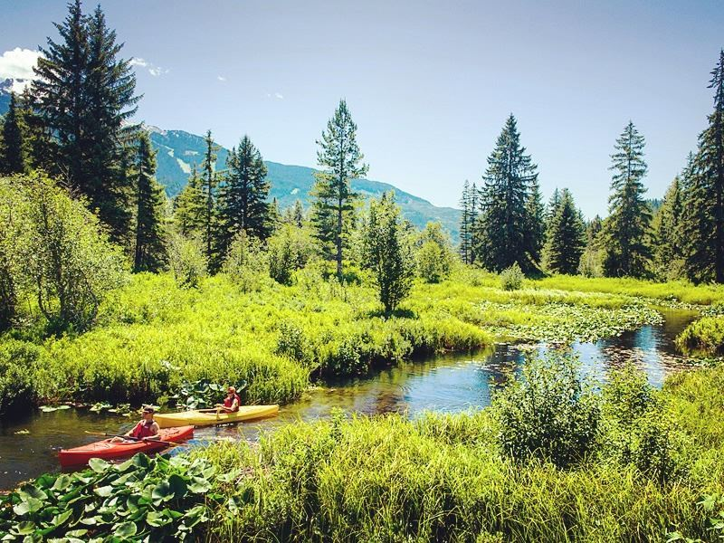 canoeing the river of golden dreams
