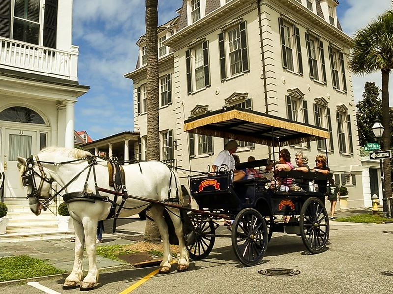 carriage rides charleston