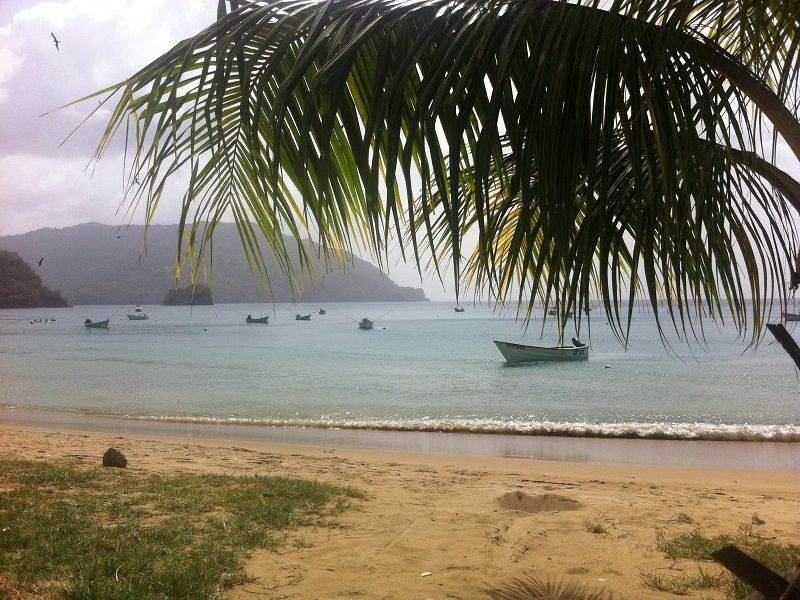 Charlotteville Beach at Coco Reef