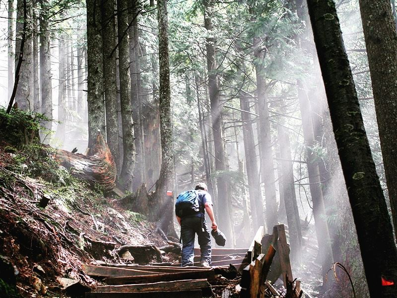 hiker trekking the grouse grind