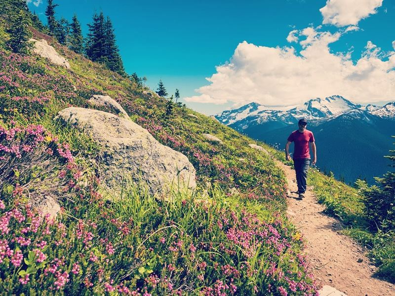 hiking the high note trail whistler