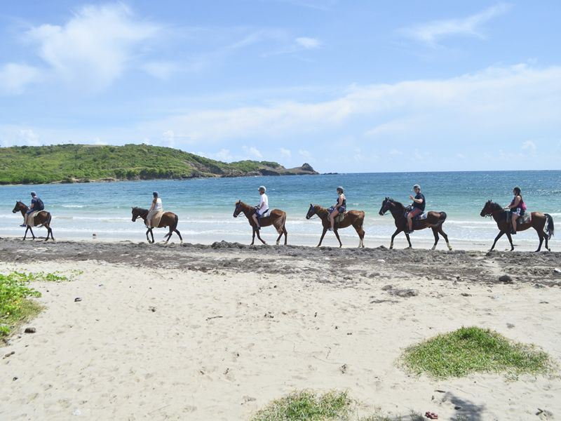horse riding along the beach in st lucia