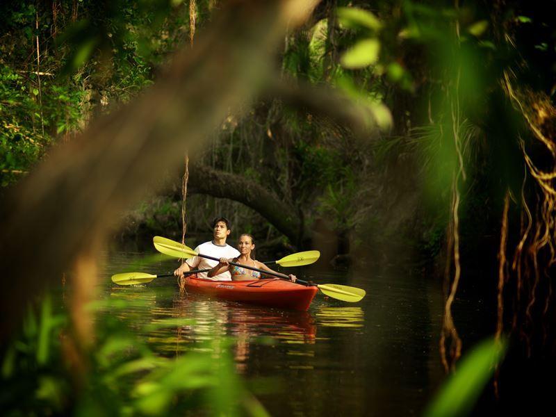 kayaking on fort myers estero river