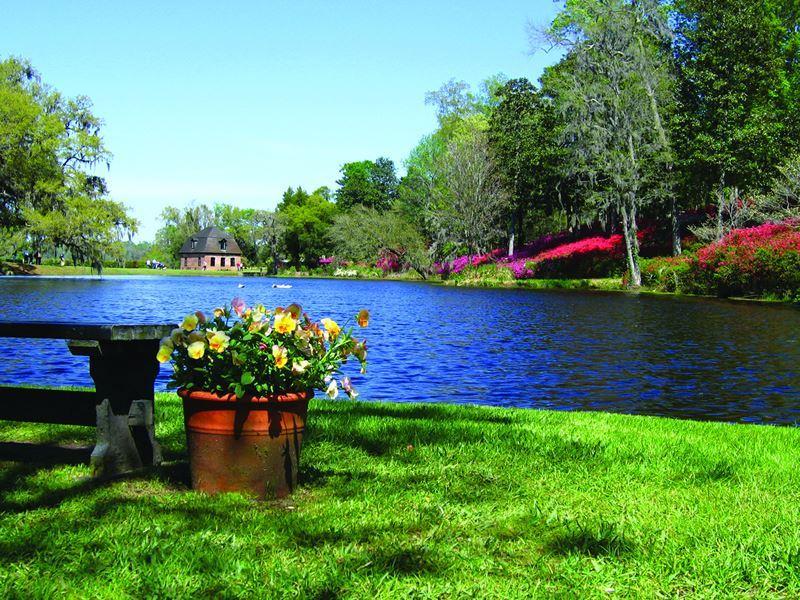 middleton place lake charleston