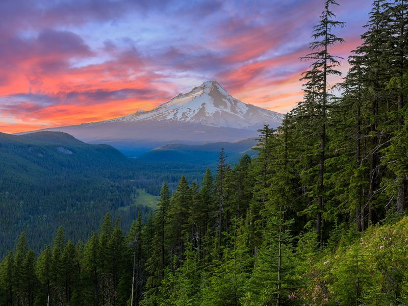 mount hood scenery oregon